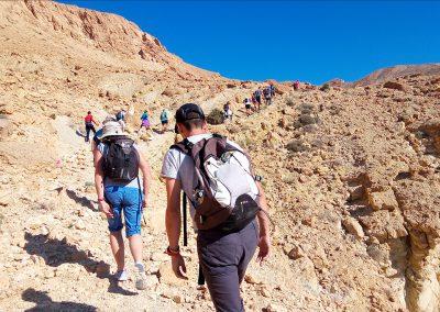Trail dans les oasis de montagne